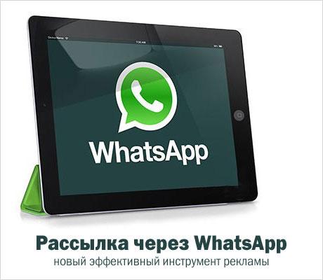 Картинки по запросу Программы для рассылки Whatsapp